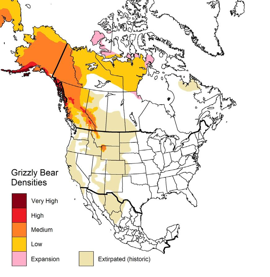 2 This is Figure 2 from the COSEWIC Assessment and Status Summary. It shows the boundaries of the current and historic distribution of the Grizzly Bear in North America.