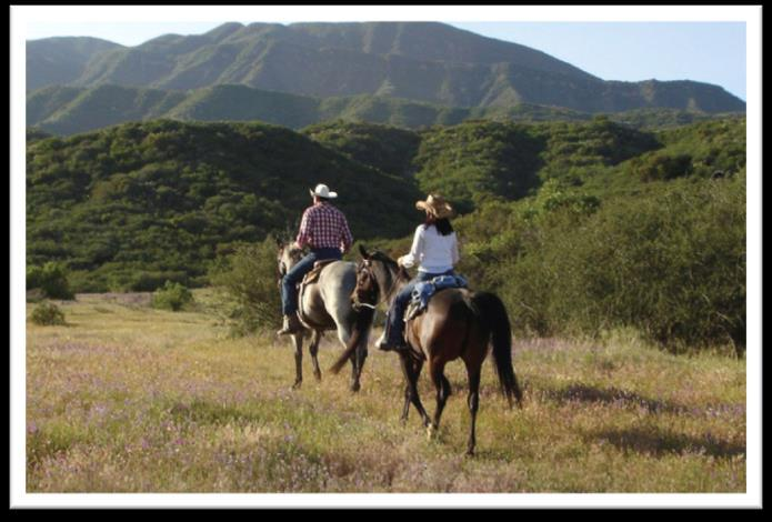 Horseback Riding With two horseback riding vendors, the Ojai Valley Inn & Spa has the best of all possible riding options in the Valley.
