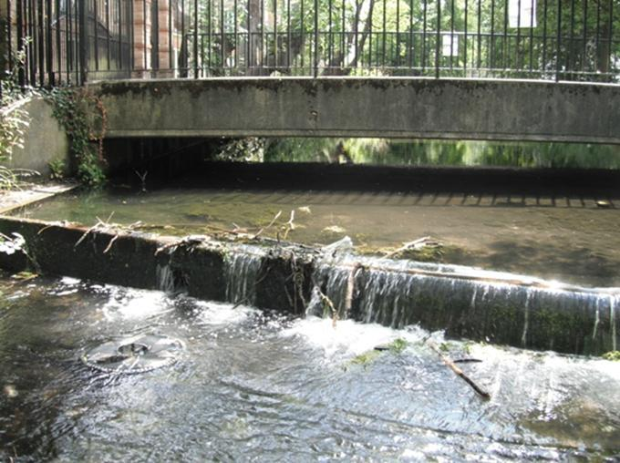 Examples of similar weir removal project on