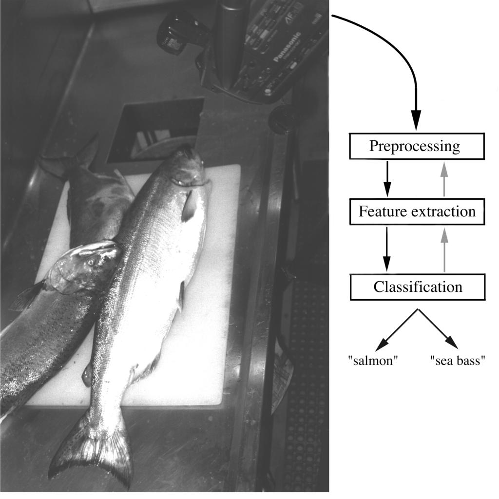 Pattern Recognition By Example Example: Sorting Fish Pattern Recognition System Requirements Set up a camera to watch the fish coming through on the conveyor belt.