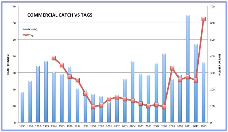 Commercial catch Figure 4 shows the commercial catch and catch rate for King Threadfin from 1990-2013 (data for 2013 incomplete).