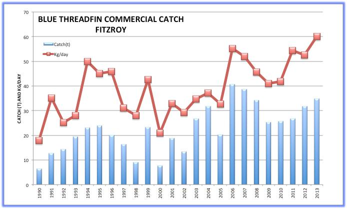 Commercial catch Figure 12 shows the commercial catch and catch rate for Blue Threadfin from 1990-2013 (data for 2013 incomplete).