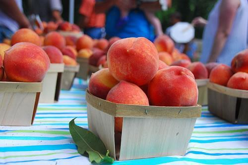 Candor Peach Festival July 19 We welcome you attend the North Carolina Peach Festival held every year on the