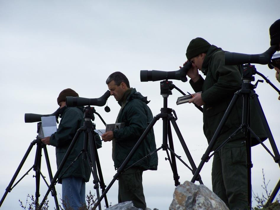 5 th axis: Participation in the Research Program «PHENOLOGY OF BIRD MIGRATION» i) Record the phenology of migration of waterfowl game & non-game species 22 major
