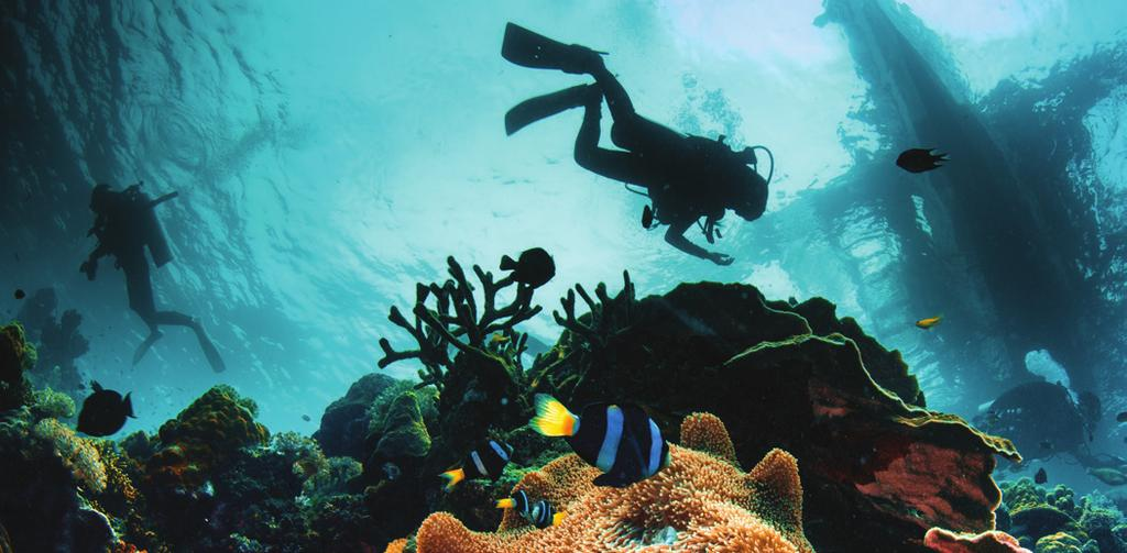 Children can be introduced to diving at Oman Sail s Dive Centre from the age of 8 years and can get a worldwide certification as a Scuba Diver at the age of 10 years.