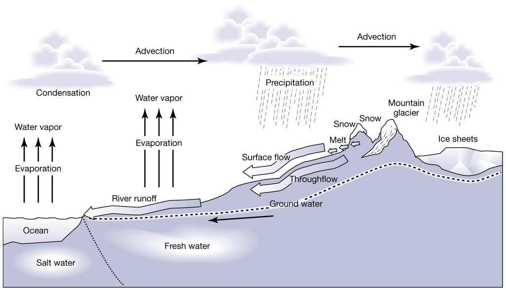 Water cycle picture Fig 4-24a Advection: Horizontal transport