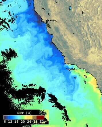 West coast of North America in summer Upwelling