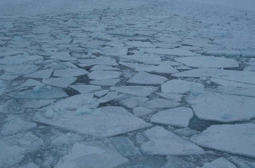 Sea ice influence on the ocean Reduces the influence of the winds Insulates the ocean