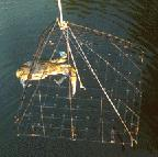 Recreational Fishery Background Recreational crabbing occurs in all of NJ s estuaries (DE Bay, Coastal bays,
