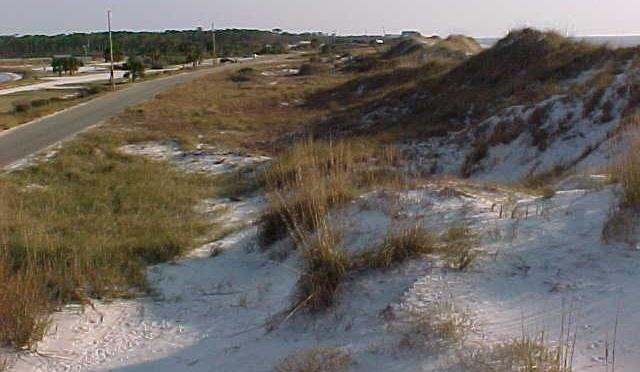 PFD Delineation Definition in NFIP regulations: Continuous or nearly continuous mound or ridge of sand with relatively steep seaward and landward