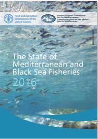 and small-scale fisheries Part 2 Management of