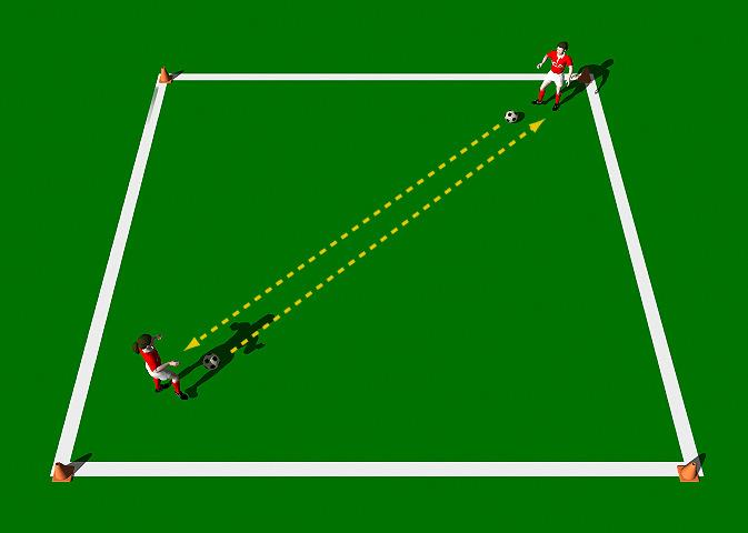 Swap the Ball This practice is designed to improve the mechanics involved in the Push Pass. An emphasis is placed on accuracy and movement. Area 10 x 10 yards. Two players. Two balls.