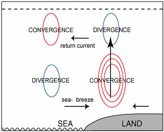 The circulation blows from the body of water (ocean, large lakes) toward land and is caused by hydrostatic pressure gradient forces related to the temperature contrast.