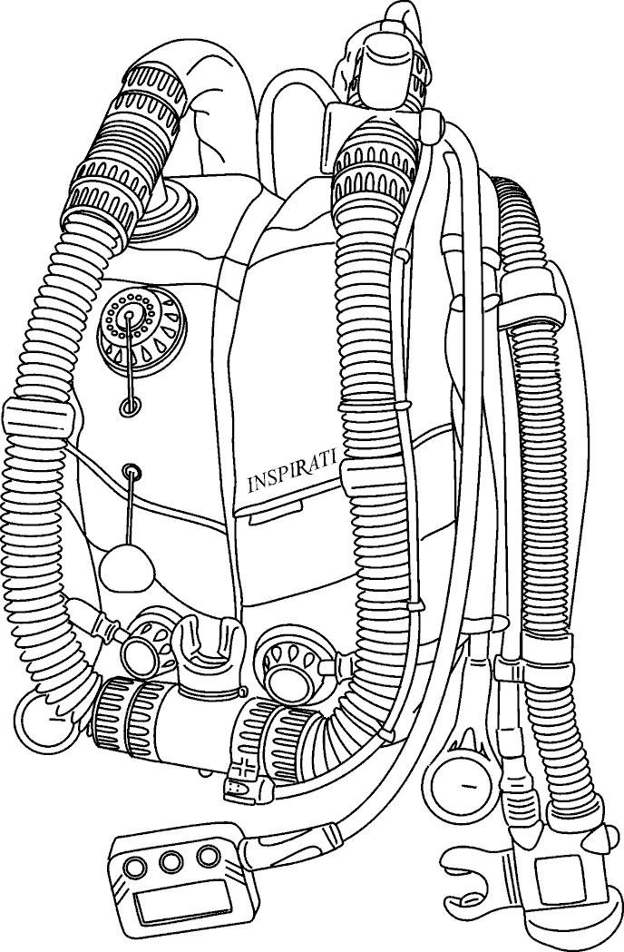 REBREATHER LAYOUT: Exhale T piece with integral water-trap Buzzer Dump/over pressure relief valve Automatic Diluent Addition Valve Exhale counterlung Inhale counterlung Pull