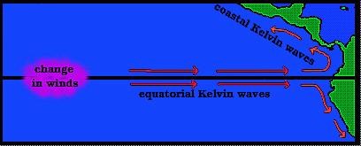 Mixed Rossby Waves Equatorial Kelvin Waves A Kelvin Wave is any wave in the ocean or atmosphere that balances the Coriolis Force with a topographic boundary.