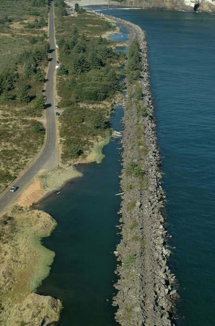 North Jetty Lagoon Fill Losing: 1.14 acres of wetlands 4.71 acres of waters of the U.S.