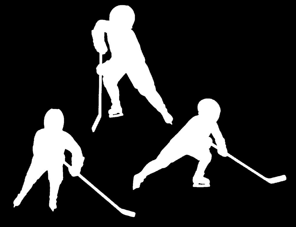 LESSON PLAN C-3 Push and Glide (refine) Players pair off. (Players of same size if possible). 1. Partners face each other. 2. Skater pushing places hands on partner s hips. 3.