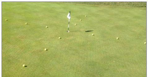 PUTTING T DRILL Place golf balls in a criss cross pattern or a T around the green.