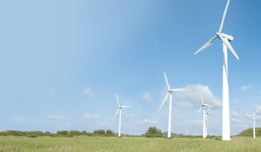 GLOBAL WIND ENERGY HARNESSES Our wind industry harnesses meet global compliance standards: ANSI, OSHA, CSA and