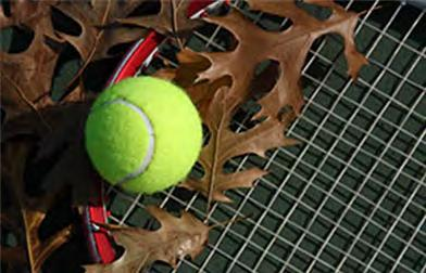 Tennis Transition Plan From Dave Clancy Dear Sycamore Creek Members and in particular our tennis families, In conjunction with the Board s overall review of the club s tennis operations, the club s