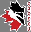 Moving Passing and Receiving Moving saucer pass - backhand HOCKEY CANADA CORE SKILLS PEEWEE Snap Shot Slap Shot Tips and Deflection Offensive Tactics Defensive Zone One timer One timer Shot / pass