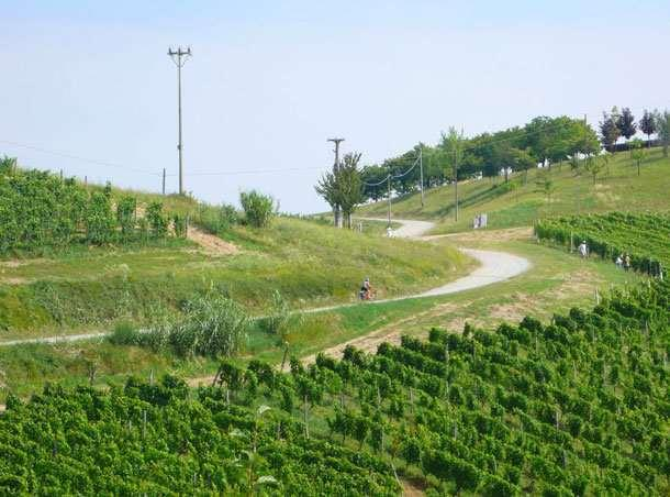 Italy -Piedmont Road Bike Tour 2018 Individual Self-Guided 8 days / 7 nights This is the land of the champion Fausto Coppi, il Campionissimo, who trained his legs in these hills.
