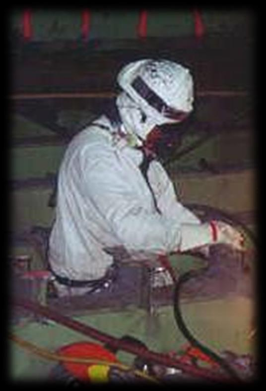 Personal Protective Equipment (PPE) Protective Work Clothing and Equipment Use where a hazard is present or is likely