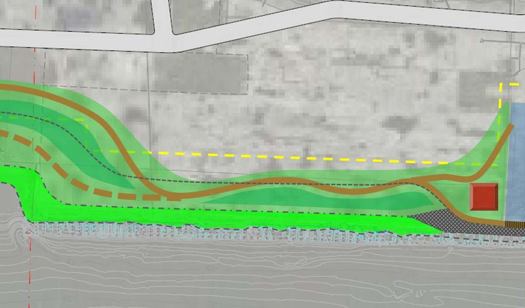 Former Bulkhead and South Cove Varying Topography Upper Shoreline = Bioengineered Dense Woody