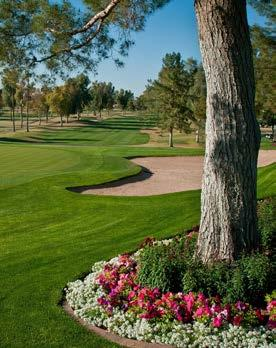 The Classic Golf Course Mesa Country Club was created in 1948 by legendary golf course architect William Billy Bell.