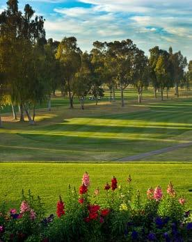 Easily accessible from the 101, 202 Red Mountain portion or US60, Mesa Country Club is perhaps the most conveniently located private club in town.