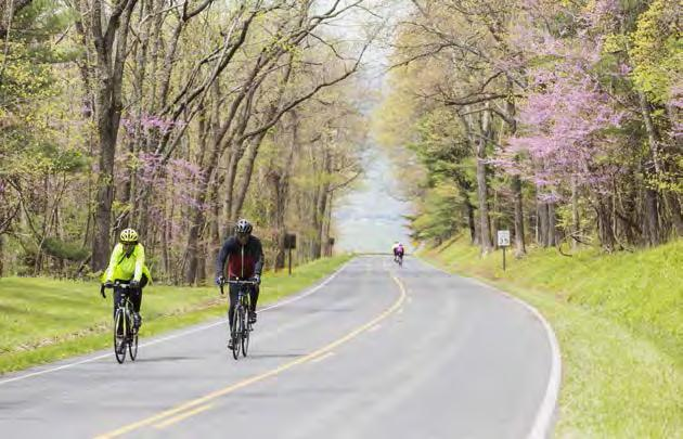 Special Events and Opportunities Once or twice a year restricting a park road to nonmotorized use May include programming or participant support Level of