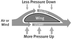 Bernoulli s Principle: As the velocity of the fluid increases, the pressure within the fluid decreases.