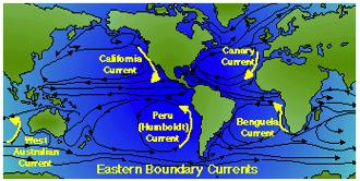 wind driven surface ocean currents EASTERN BOUNDARY CURRENTS broad, shallow, cold, and slow, currents (15-20 sv) Canary current (N.
