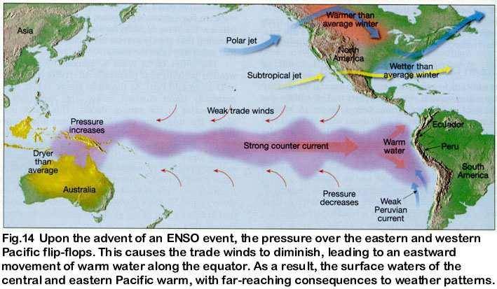 Effects of El Niño: marked by abnormal weather patterns that drastically affect the economies of Ecuador and Peru abnormally strong winds, originating from the west push masses of warm surface water