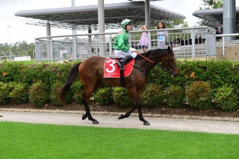 Chris is no stranger to this family as he had ridden her dam Aqua D Amore for Gai Waterhouse.