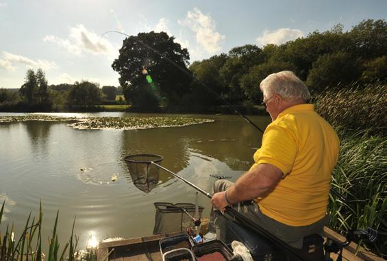 Old Bury Hill Lake was created in Victorian times and is a traditional mixed fishery with a large head of carp, tench, bream, roach, perch, rudd, crucian carp, pike and zander.