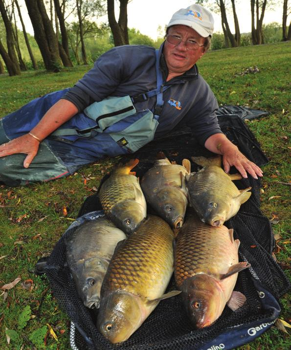 The lake holds 700 double-figure carp, a big head of twenties and around a dozen thirties, and at the start of the predator season on October 1st, pike and zander anglers enjoy hectic sport, with