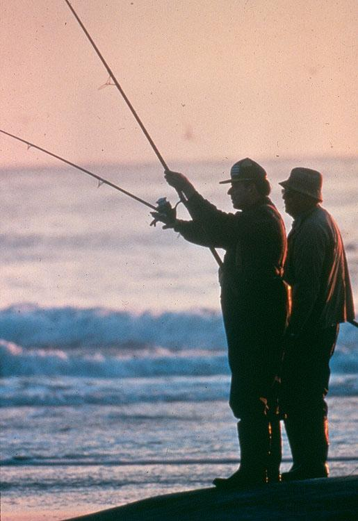Fishery Management Plans Include: Stock assessment Characterization of the