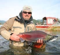 SOCKEYE SALMON Description: It s hard fighting abilities and great tasting meat, makes this species a most sought after sport fish for many local and foreign anglers.