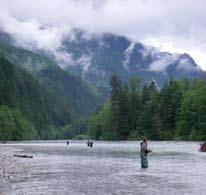 These trips are for fly fishers of any level and are very rewarding with days of multiple hook ups.