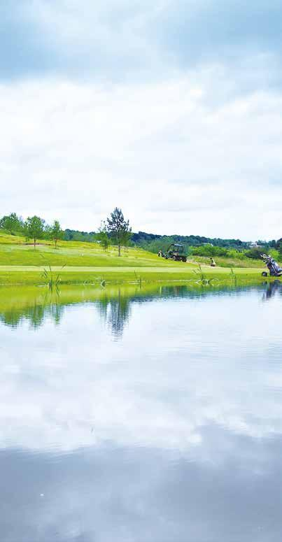 WIKE RIDGE Our championship golf course offers 18 dramatic holes set within stunning woodland scenery.
