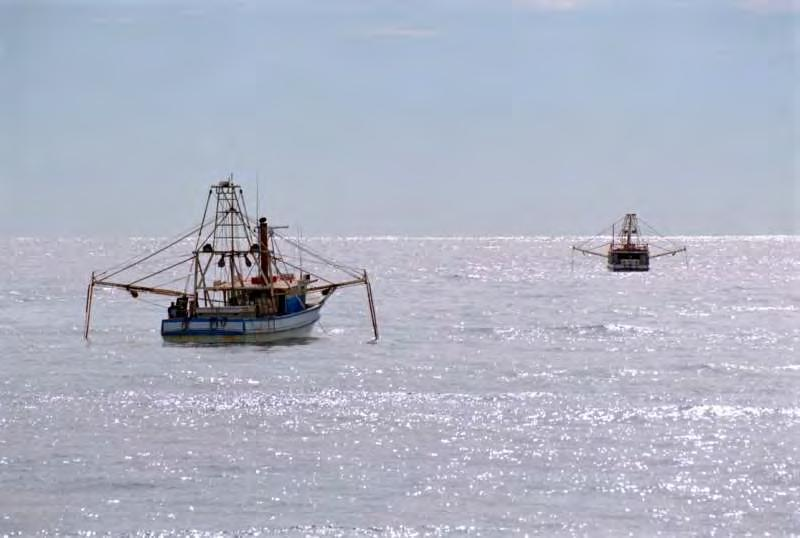 Typical situations so far as possible Some vessels engaged in fishing may be unable to manœuvre as required by the Rules