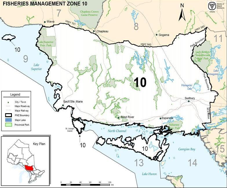 Management Zone 10 for more information). Given this information, MNR and the FMZ 10 Advisory Council decided to make management of lake trout its first focus.