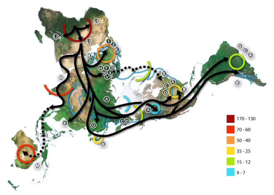 EARLY HUMAN MIGRATIONS: ROUTE OF MDNA Africa North
