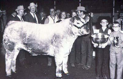 60 s Recognition of Need to Change 1969 Grand Champion Steer