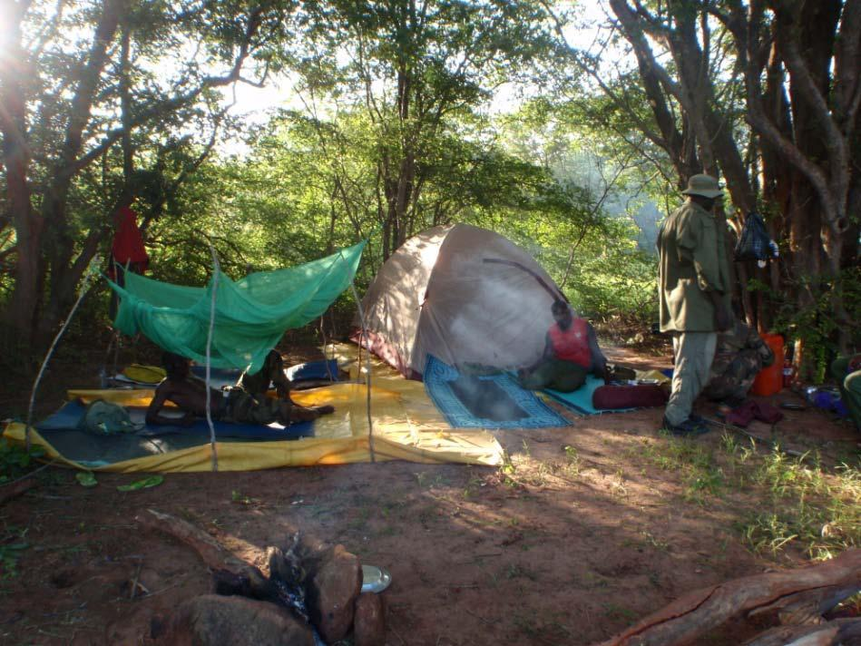 PROGRESS Objective 1: Reduce levels of poaching in Yankari Game Reserve by increasing the frequency, duration, coverage, and efficacy of anti-poaching patrols. Activity 1.