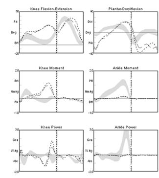 Impact of Joint Kinetic Data The joint kinetic data (GRF and C of P) provided an understanding of the extent of weight bearing during barefoot walking and how that changes with the addition of an AFO.