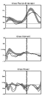 vs. PLS Knee Kinematics/Kinetics PLS Increased knee extension at IC Reduced knee flexor moment pattern Normal power absorption in MST Impact of Joint Kinetic Data PLS brace results in subtle changes
