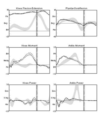 of knee flexion moment, excessive and premature ankle plantar flexor moment Elimination of abnormal knee and ankle power absorption and ankle power generation Confirms ankle power generation