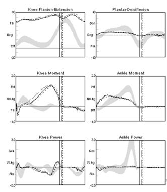 FRO Ankle Kinematics/Kinetics FRO s Minimal ankle range of motion Ankle plantar flexor